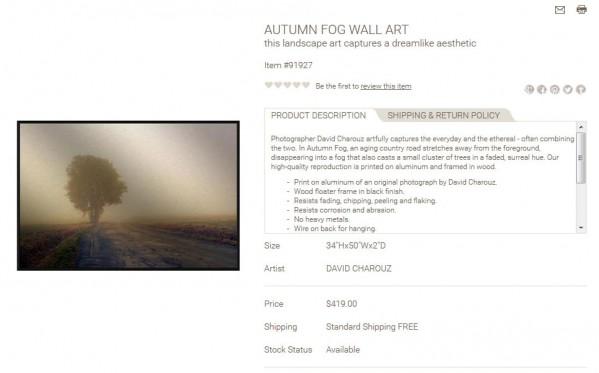 Autumn Fog Wall Art product description